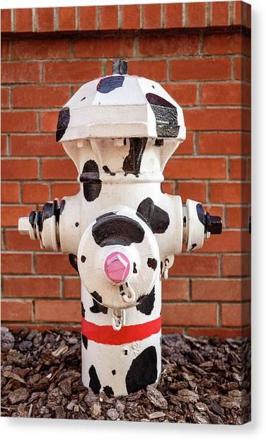 Dalmations Canvas Print - Dalmation Hydrant by James Eddy