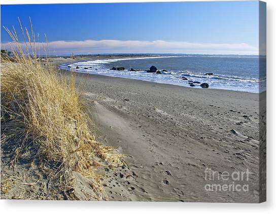 Damon Point Canvas Print