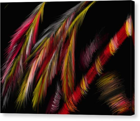 Dance Of The Night Canvas Print by Michelle Dick