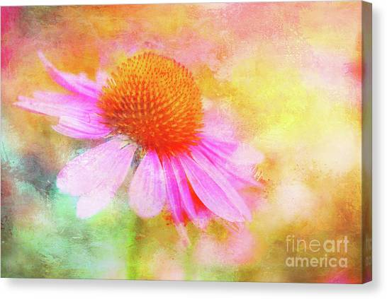 Dancing Coneflower Abstract Canvas Print