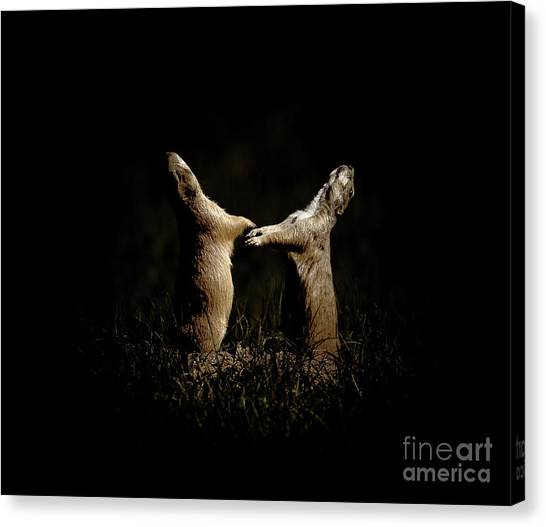 Nm Canvas Print - Dancing In The Moonlight by Robert Frederick