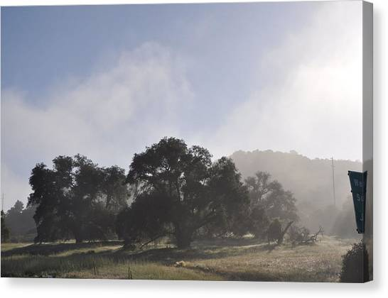Dancing Mist Canvas Print