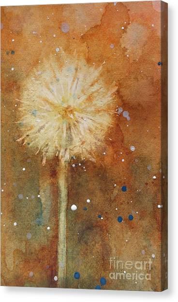 Dandelion Clock 1 Canvas Print