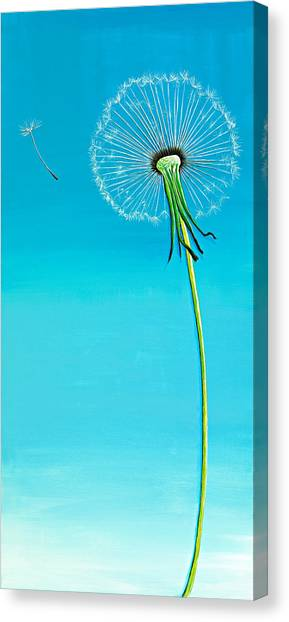 Canvas Print - Dandelion by David Junod