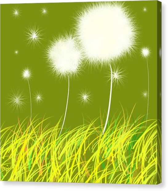 Dandelions Are Free Canvas Print