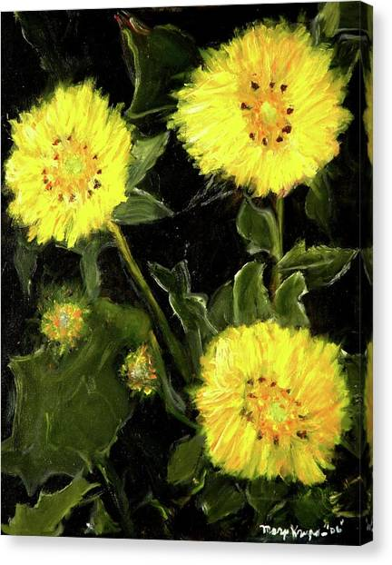 Dandelions By Mary Krupa  Canvas Print