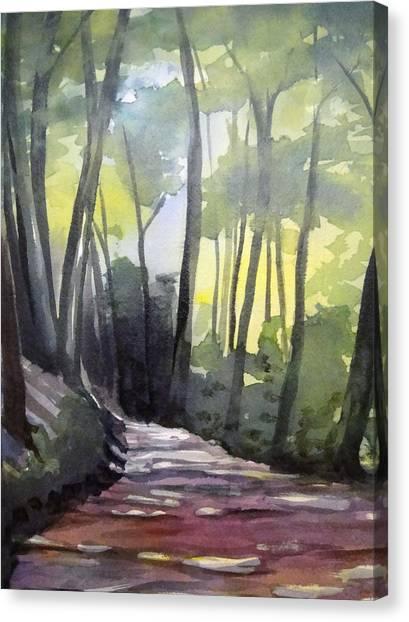 Dappled Dirt Road Canvas Print
