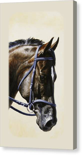 Bridle Canvas Print - Dark Bay Dressage Horse Phone Case by Crista Forest