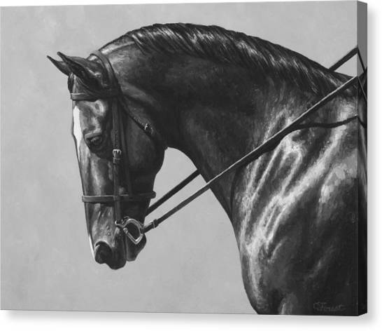 Bay Horse Canvas Print - Dark Brown Dressage Horse Black And White by Crista Forest