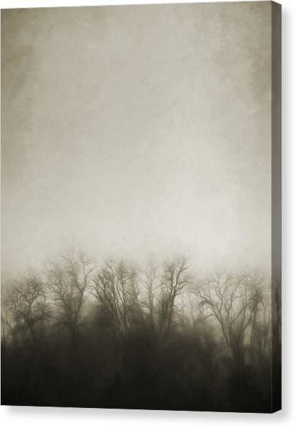 Foggy Forests Canvas Print - Dark Foggy Wood by Scott Norris