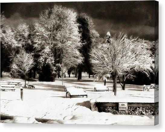 Dark Skies And Winter Park Canvas Print