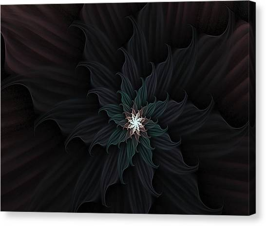 Dark Star Flower Canvas Print