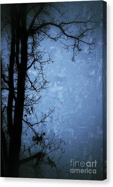 Dark Tree Silhouette  Canvas Print
