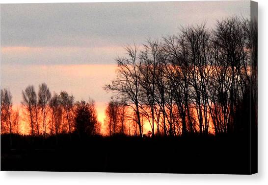 Dark Trees At Sunset Wc  Canvas Print by Lyle Crump