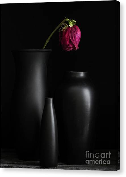 Dark Trio Canvas Print