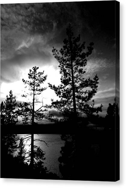 Darkness Crawls Canvas Print