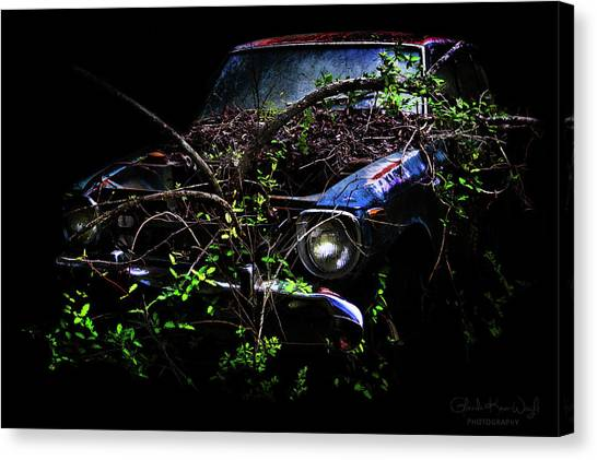 Canvas Print featuring the photograph Datsun Treehouse by Glenda Wright