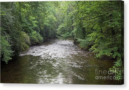 Davidson River In North Carolina Canvas Print
