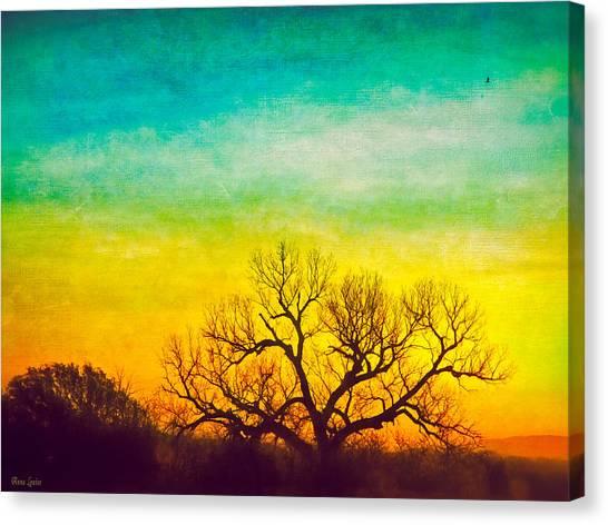 Dawn Magnitude Canvas Print