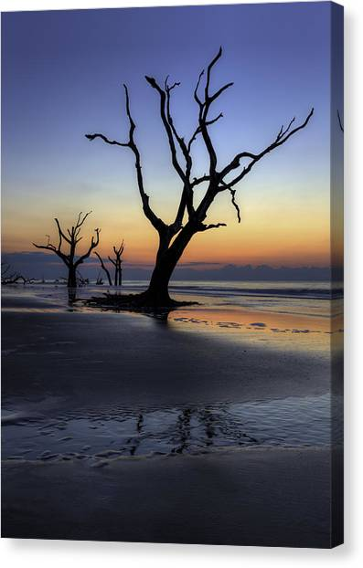 Dawn On Bull Island Canvas Print