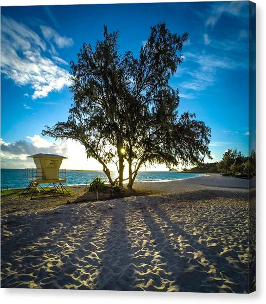 Beach Sunrises Canvas Print - Dawn Patrol by Brian Governale