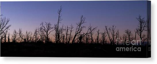 Verde Canvas Print - Dawn Sky At Mesa Verde by Twenty Two North Photography