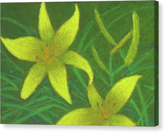 Day Lilies Canvas Print