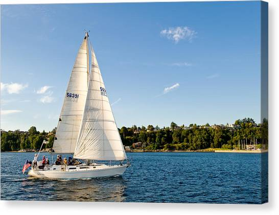 Day Sail Canvas Print by Tom Dowd