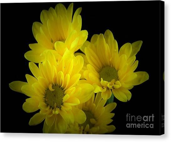 Dazzling Yellow Canvas Print