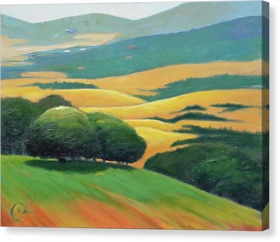 Ddark Trees Canvas Print