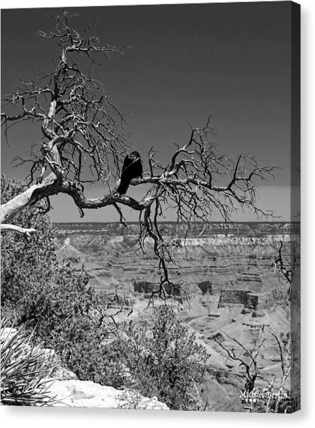 Dead Tree With Crow Canvas Print by Michael Perlin