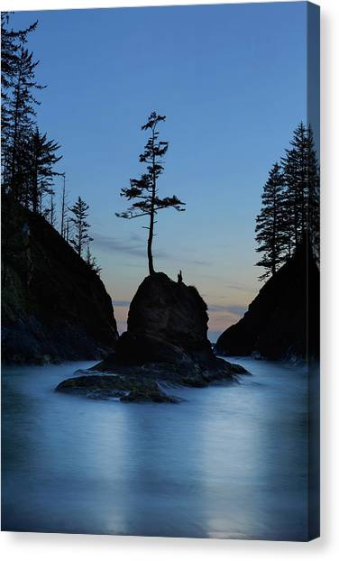 Canvas Print - Deadman's Cove At Cape Disappointment At Twilight by David Gn