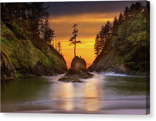 Canvas Print - Deadman's Cove At Cape Disappointment State Park by David Gn