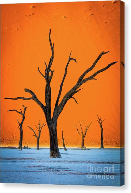 Namib Desert Canvas Print - Deadvlei Contrast by Inge Johnsson