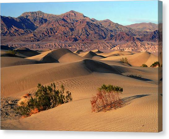 Death Valley Dunes Canvas Print by Tom Kidd