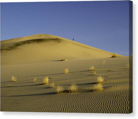 Death Valley Sand Dune At Sunset Canvas Print