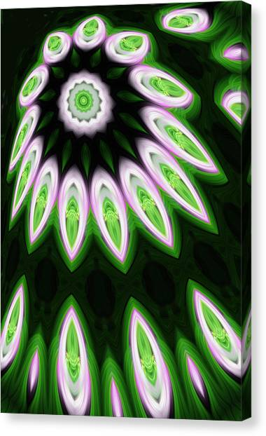 Debut Of Opening Star Canvas Print by Linda Phelps