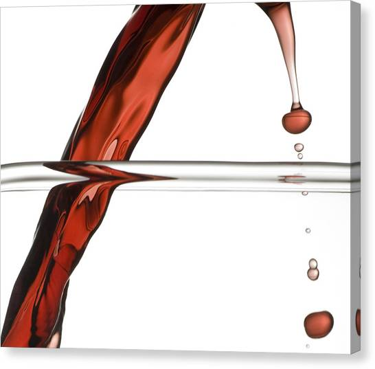 Decanting Wine Canvas Print