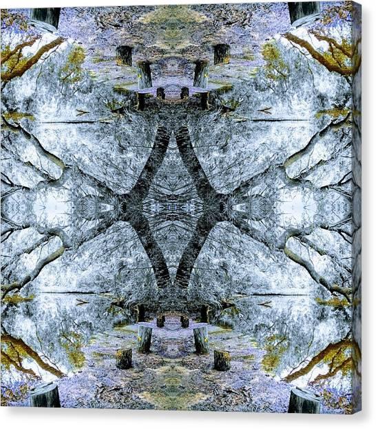 Deciduous Dimensions Canvas Print