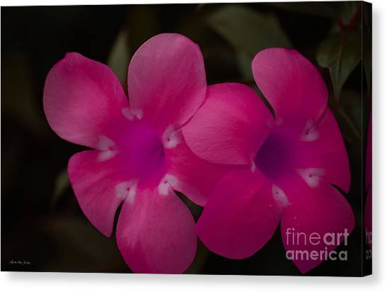 Canvas Print featuring the photograph Decorative Floral A62917 by Mas Art Studio