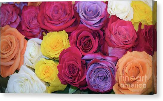 Decorative Wallart Brilliant Roses Photo B41217 Canvas Print