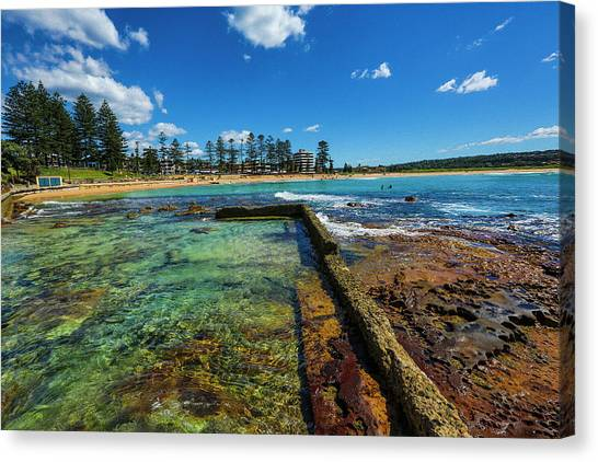 Dee Why Rock Pool Canvas Print