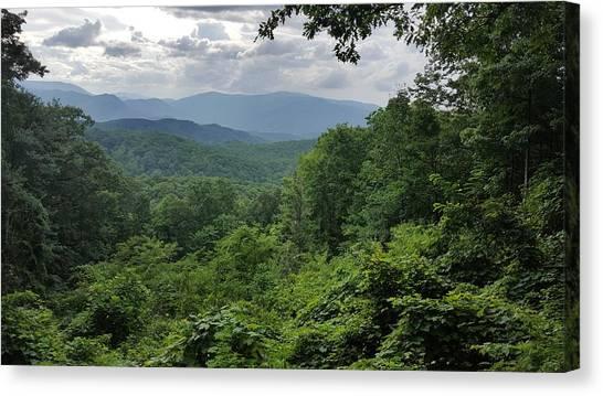 Deep In The Great Smoky Mountains Canvas Print by John Arthur Robinson