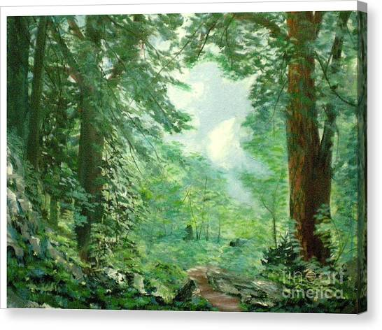 Deep Woods Path Canvas Print by Hal Newhouser
