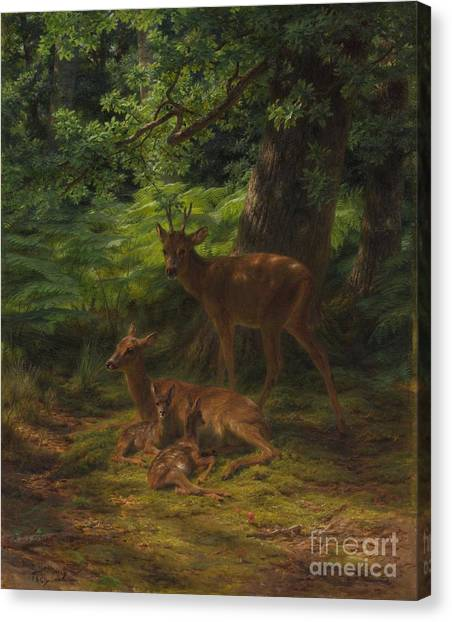 Nursing Canvas Print - Deer In Repose by Rosa Bonheur