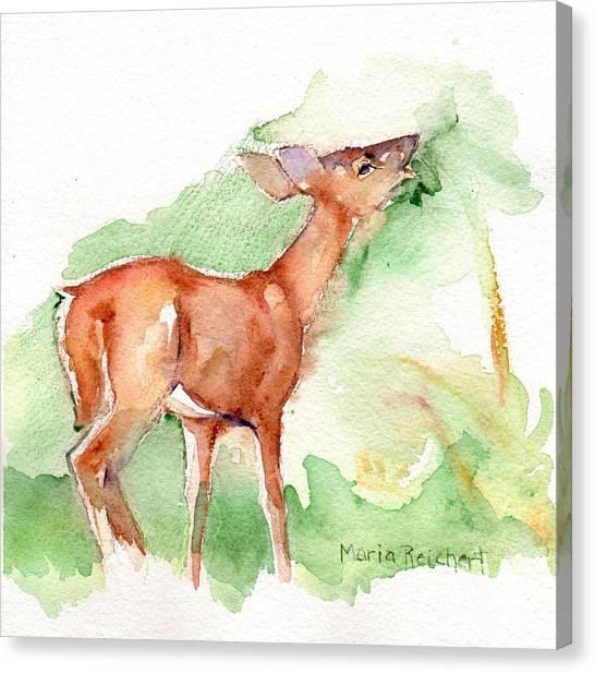 Deer Canvas Print - Deer Painting In Watercolor by Maria's Watercolor