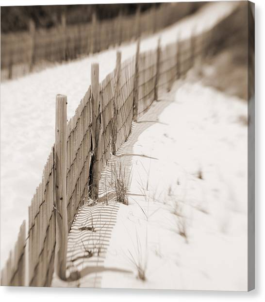 Delaware Dunes Number Eight  Canvas Print