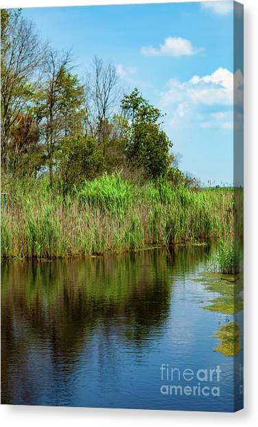 Delaware Waterway Canvas Print