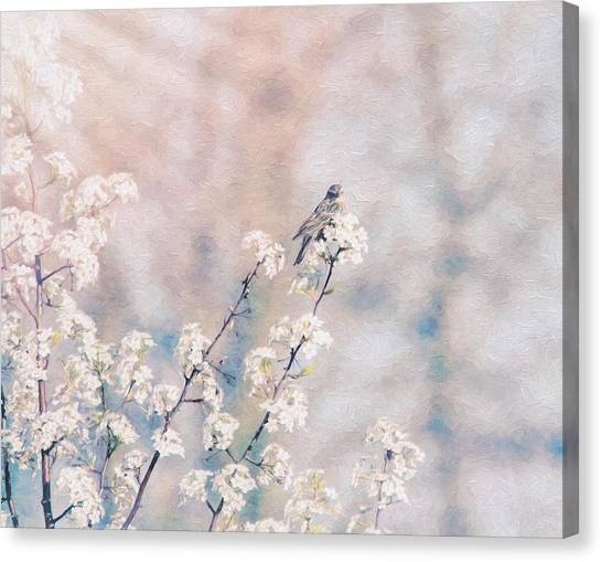 Spring Canvas Print - Delicate Delight by Dan Sproul