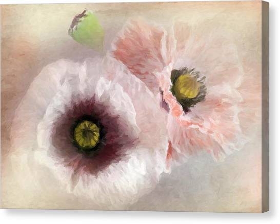 Delicate Pastel Poppies Canvas Print